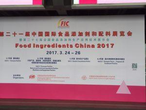 f_i_china_2017_01